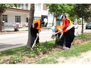 Aksaray'da refüjlerde temizlik ve çapa çalışması yapılıyor