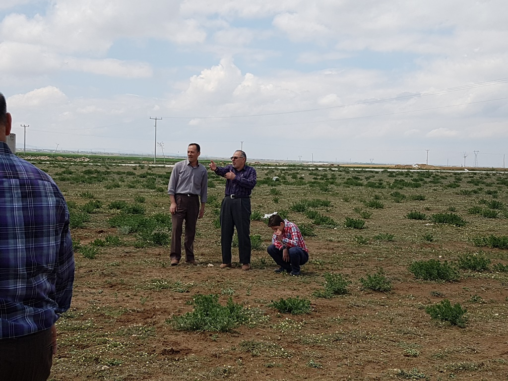  Küçük Bozcamahmut Türkmen şenlikleri 12. si büyük coşku ile gerçekleşti