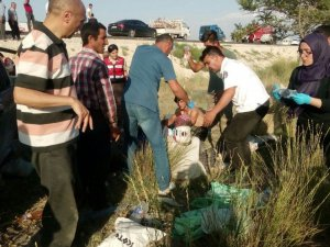 Tarım işçilerini taşıyan kamyonet takla attı: 2 ölü, 7 yaralı