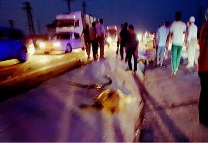 Bozcamahmut'ta kaza yapan şoförden haber var!