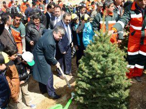 """Başkan Akyürek: """"Yeşil İçinde Konya' için çalışıyoruz"""""""