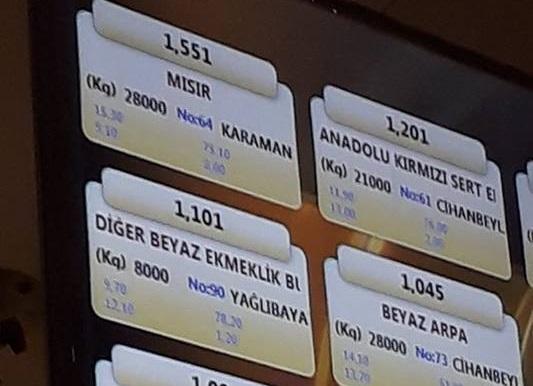 Mısır'da 1.551 TL sürprizi!