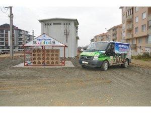 Akşehir Belediyesinden 'Kedi Evi' projesi