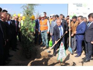 """Aksaray'da """"Geleceğe Nefes"""" sloganıyla 90 bin fidan toprakla buluşturuldu"""
