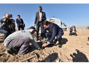 """Başkan Kılca: """"Lavanta bahçemiz, turistlerin yeni gözde mekanı olacak"""""""
