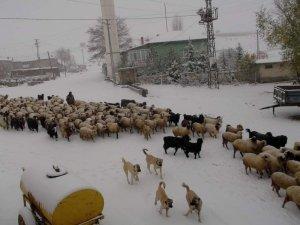 Konya'da yaylalar beyaza büründü