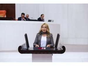 MHP'li Esin Kara'dan Bakan Pakdemirli'ye soru önergesi