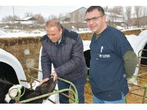 Aksaray'da hayvancılık işletmeleri denetleniyor