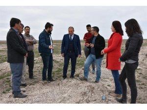 Yenikent'te Meralar Gürleşiyor Hayvancılık Gelişiyor