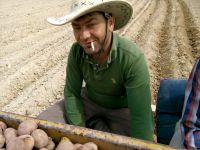 Eskil'de elektrik akımına kapılan şahıs öldü