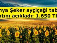 Konya Şeker ayçiçeği taban fiyatını açıkladı: 1.650 TL