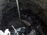 Su Kuyusuna Düşen İnek Vinçle Kurtarıldı