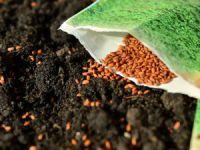 2016 Sertifikalı Tohum Destek miktarları belli oldu