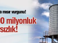 Altınekin'de 200 milyonluk mısır hırsızlığı!