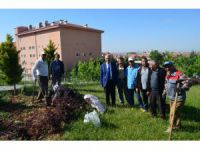 Aksaray'da SGK İl Müdürlüğü'nün Çevresi Değişiyor