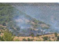 Seydişehir'de orman yangını