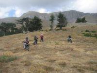 Beyşehir'de motosiklet sevdalılarından Karagöl zafer tırmanışı