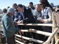 Aksaray'da Polis ekipleri hayvan pazarını denetliyor