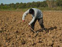 Toprak analizi desteği yeniden başlıyor
