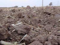 Aksaray'da kuraklık çanları çalmaya başladı