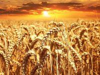 Ekinde kuraklık sigortası dönemi başlıyor