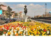 Akşehir çiçeklere büründü