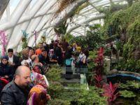 Tropikal Kelebek Bahçesine ziyaretçi akını