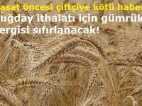Hasat öncesi çiftçiye kötü haber! Buğday ithalatı için gümrük vergisi sıfırlanacak!