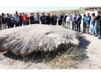 Arkeoloji öğrencileri, ilk derslerini kazı alanında işledi