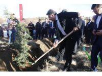 Yunak'ta 2 bin 500 fidan toprakla buluştu