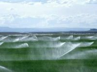KOP tamamlanınca bölge tarımın yıldızı olacak