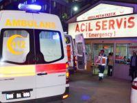 Veteriner Hekim Ayağından Yaralandı