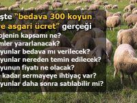 İşte '300 koyun ve asgari ücret' şartları