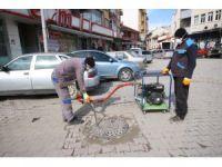 Beyşehir'de haşereyle mücadele çalışmaları hız kazandı