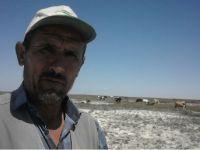 En kıdemli çoban! Eskilli Hüseyin Ermiş tam 50 senedir çobanlık yapıyor