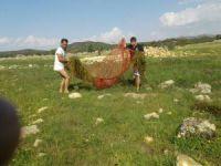 Çayırlarda su birikintilerindeki balıkları ölümden kurtardılar