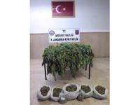 Aksaray'da uyuşturucu operasyonu: 1 tutuklama