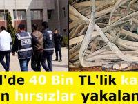 Eskil'de 40 Bin TL'lik kablo çalan hırsızlar yakalandı!