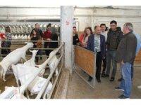 Genç Çiftçiler, Toprağa Dokunmak İçin Beyşehir'de Buluştu