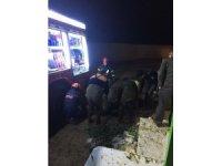 Aksaray'da Fosseptik Çukuruna Düşen Gebe İnek Kepçeyle Kurtarıldı