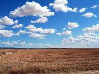 Eskil'de mera ve hazine arazilere ekilen ürünlere el konulacak