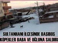 Sultanhanı''nda başıboş sokak köpekleri baba oğula saldırdı