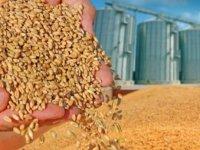 TMO'ya sıfır gümrükle tahıl ithalatı yetkisi!