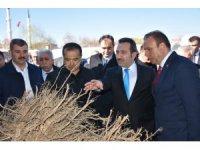 Aksaray'da çiftçiye 20 bin 885 meyve fidanı dağıtıldı