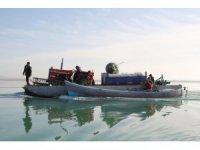 Beyşehir Gölü'ndeki Çeçen Adası'nda ekim mesaisi