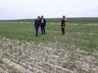 Aksaray'da ziraat mühendisleri çiftçileri bilgilendirdi