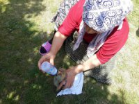Konya'da bulunan yavru tilki biberonla beslendi