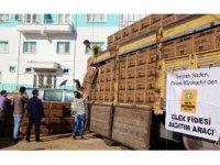 Konya Büyükşehir Belediyesinden çilek üreticisine destek