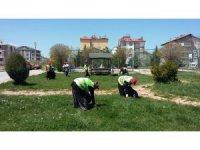 Beyşehir'in park ve bahçeleri kadınlara emanet