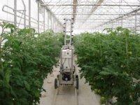 Örtüaltı tarımda uzaktan kumandalı ilaçlama dönemi başlıyor